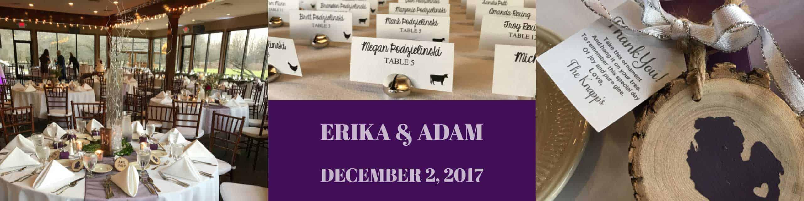 winter Ann Arbor Wedding Venue