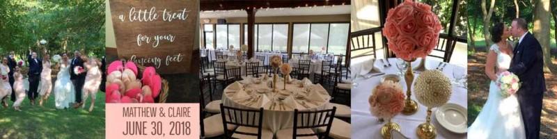 ann arbor wedding reception near milan